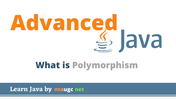 What is Polymorphism