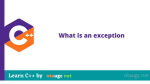 What is an exception